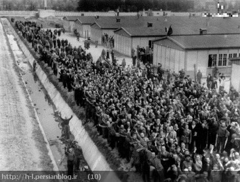 ساکنان اردوگاه داخائو آزاد شده اند. اگر این همه شخص در یک اردوگاه آزاد شده اند، پس چه کسی کشته شده است؟