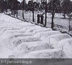 بدست مطبوعات بریتانیایی با شرح جنایات نازی ها در لهستان منتشر شد. در حقیقت، این عکس ها، گورهای اقلیت آلمانی در لهستان را نشان می دهد که در آغاز سپتامبر ١٩٣٩ بدست ارتش و مردم لهستان قتل عام شدند. تنها با ورود سربازان ارتش آلمان نازی بود که باقی مانده اقلیت آلمانی نجات یافت.